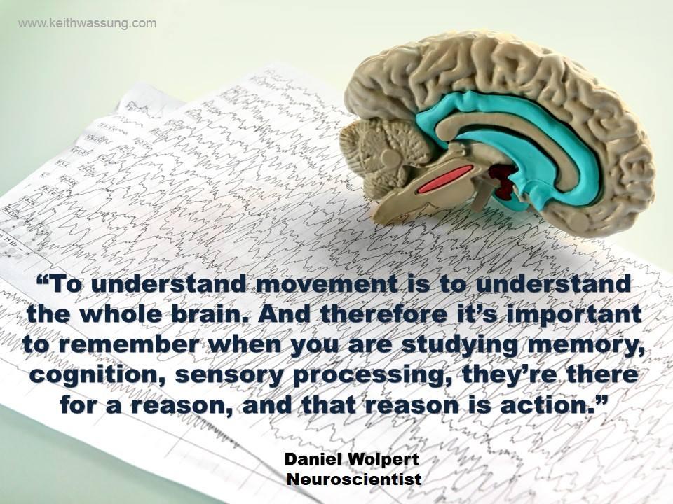 The Brain needs Movement